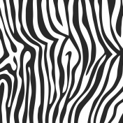 Paper 202- Zebra Print Overlay