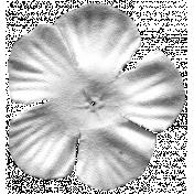 Flower 019 Template