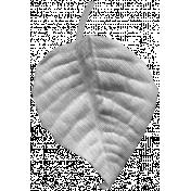 Leaf 003 Template