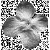Flower 034 Template