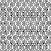 Paper 223- Geometric Template