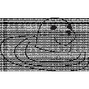 Ocean- Sea Lion Illustration
