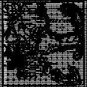 Paper 371- Cape Cod Map