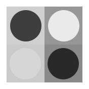 Circles 26- Pattern