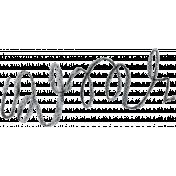 Brush 39M- Scribble