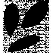Flower Set 024a