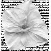 Flower 067 Template