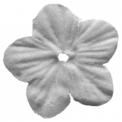 Flower 071 Tempate