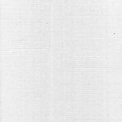 Kraft Paper Texture- Light Grayscale