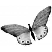 Butterfly Template 020