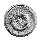Button template 049