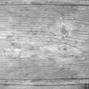 Wood Texture 008