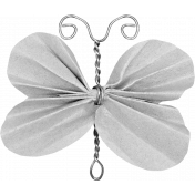 Butterfly Template 019