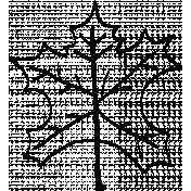 Maple Leaf Doodle Template 1