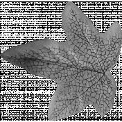 Silk Leaf Template 3
