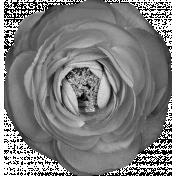 Flower Template 11