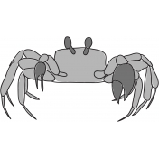 Crab Template
