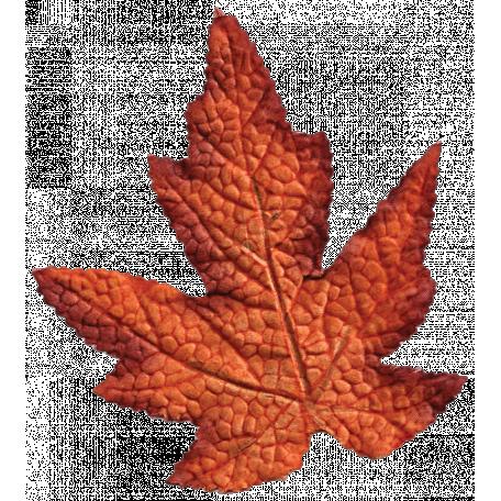 Turkey Time Elements Kit - Burnt Orange Wide Leaf