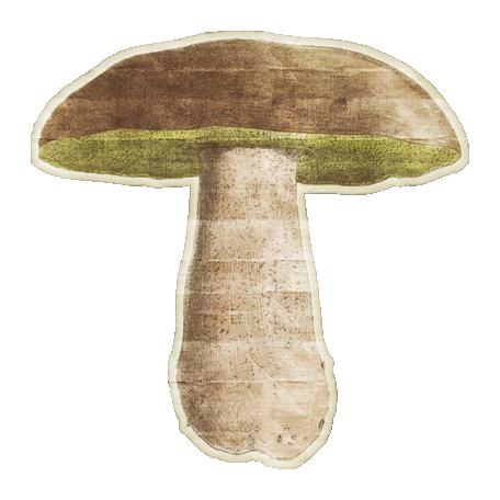 Enchanted - Mushroom 02 Sticker