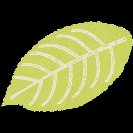 Forever Friends Mini Kit - Green Leaf