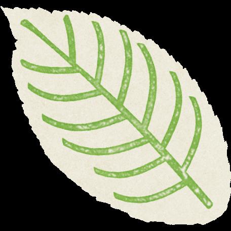 Forever Friends Mini Kit - White Leaf
