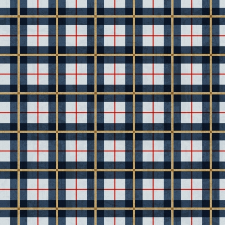Dad Paper 93 - Plaid