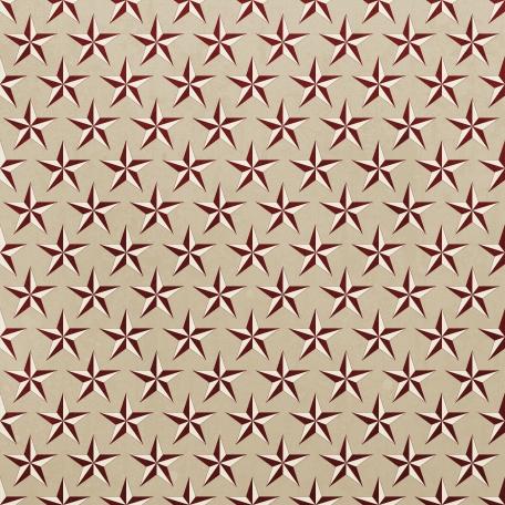 Stars 15 Paper - USA