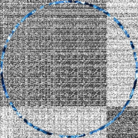 Tunisia Foil Circle 04