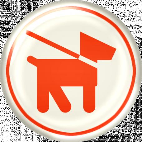 Belgium Brad - Dog