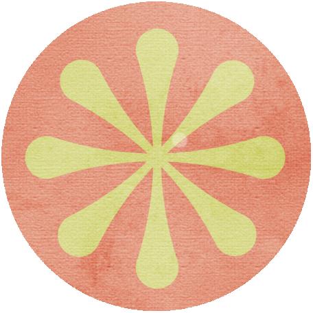 Discover Circle - Orange Slice
