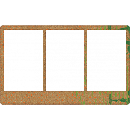 DST Frame 12 - Cork