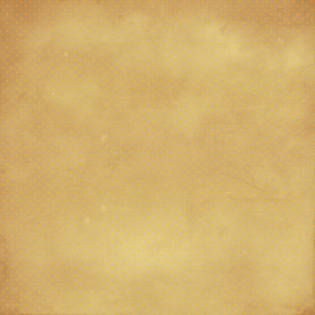 Polka Dots 11 Paper - Orange & Tan
