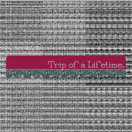 Trip of a Lifetime Tag