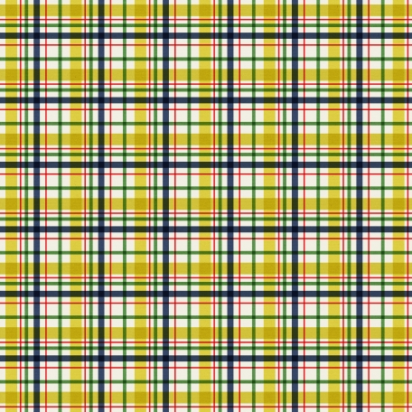 Like This - Plaid Paper