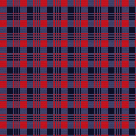 Winter Plaid - Plaid Paper - Red & Blue