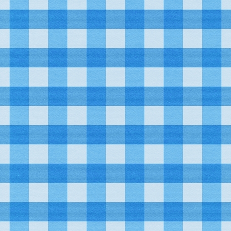 At The Farm - Plaid Paper - Blue
