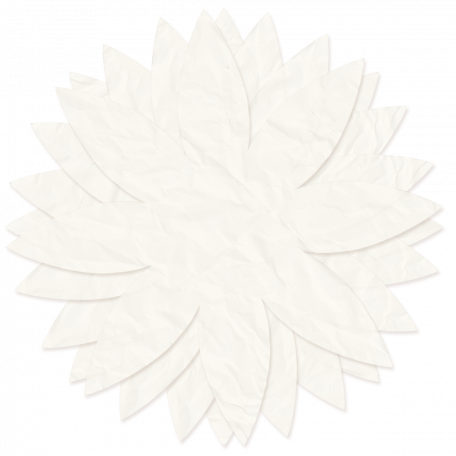 Tissue Paper Flower - White