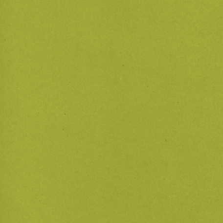 Mexico Solid Paper - Green Olive