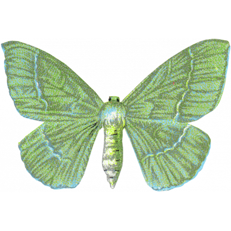 Garden Party Butterfly - Green