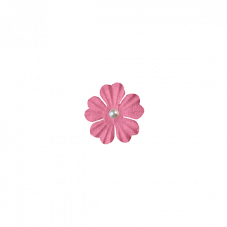 Light Pink Pearl Flower