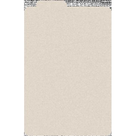 Manilla File