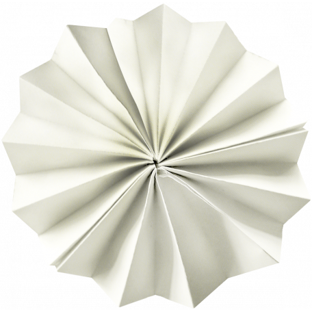Independence White Accordion Flower