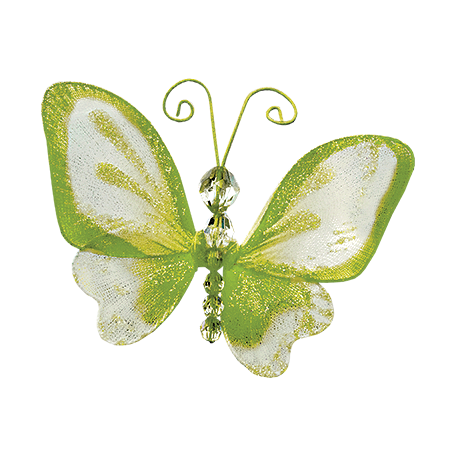 Tiny, But Mighty Green Butterfly