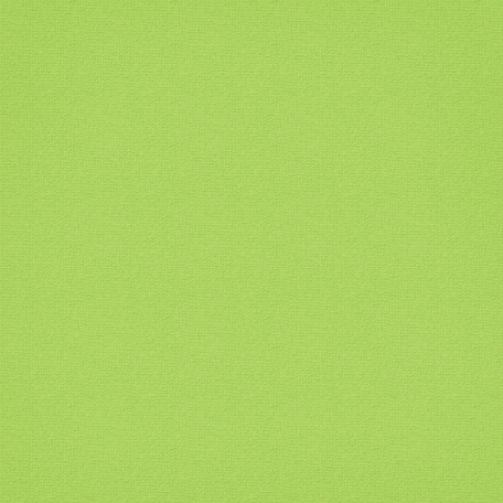 The Lucky One - Medium Light Green Cardstock