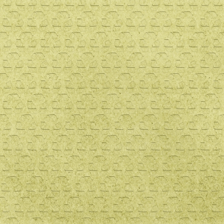 Earth Day - Lime Recycled Paper