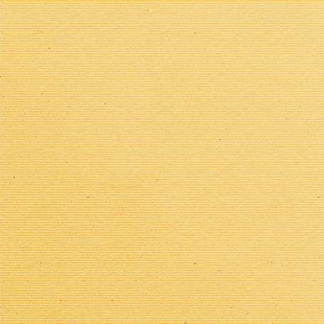 Sunshine and Lemons - Cream Horizontal Strip Paper