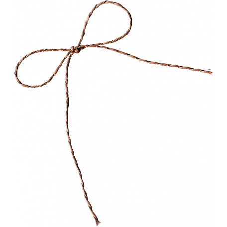 Many Thanks - Brown Twine Bow
