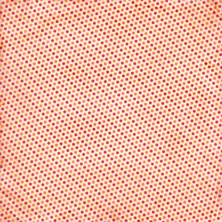 School Paper Dots Diagonal 002 - 05