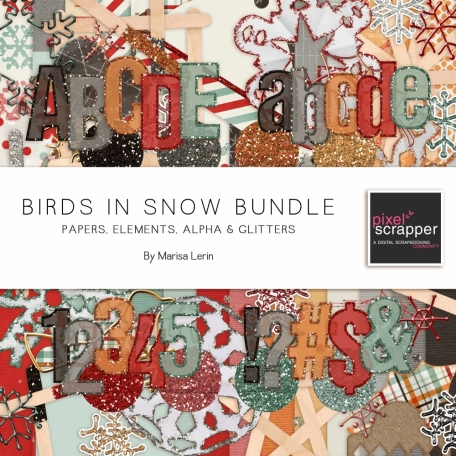 Birds in Snow Bundle