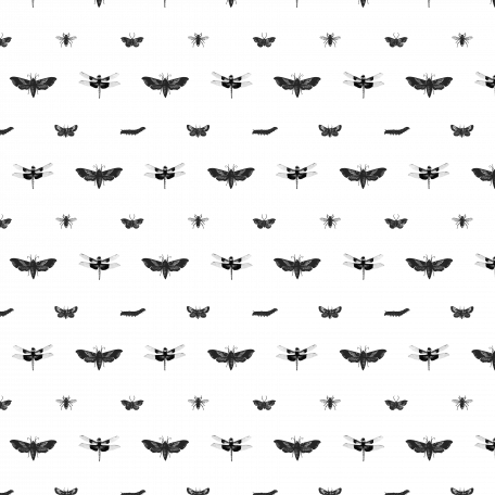 Insect Paper Overlay Template
